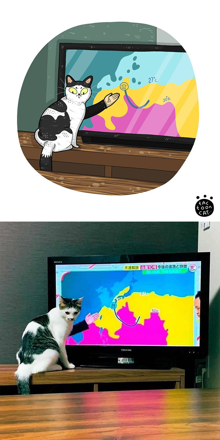 Artist Is Bringing Forgotten Memes Of Cats In The Form Of Cartoons And This Is So Purrfect