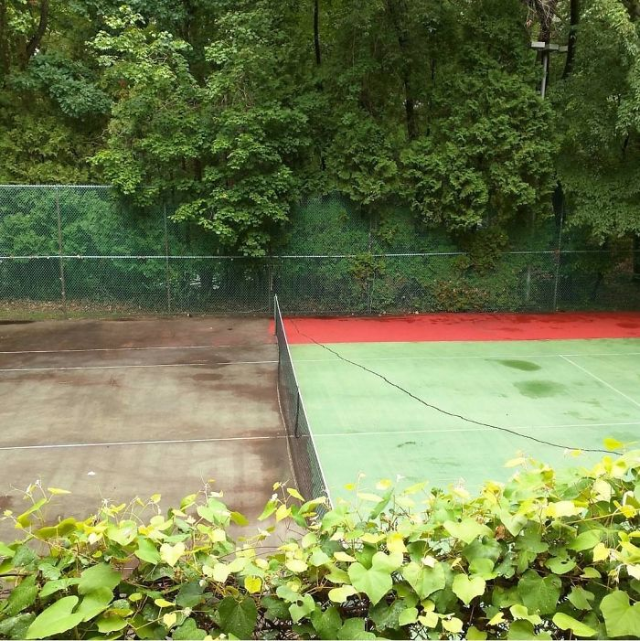 Power Washed Half The Tennis Court