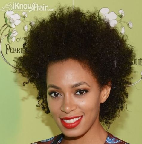 Afro Textured Hair (gallery: names of hairstyles)