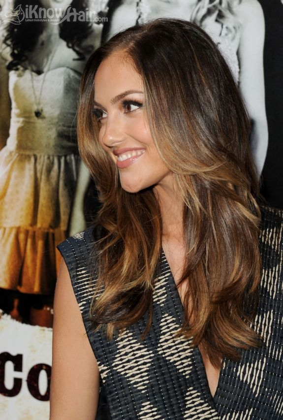 Popular Highlights In 2011 Dark Hair Highlights Brown Highlights